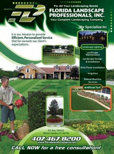 Dr. Phillips Landscaping